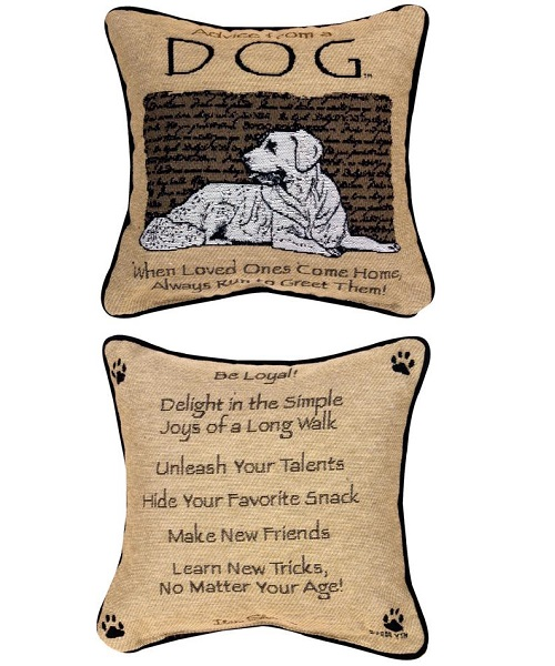 Advice From a Dog Pillow
