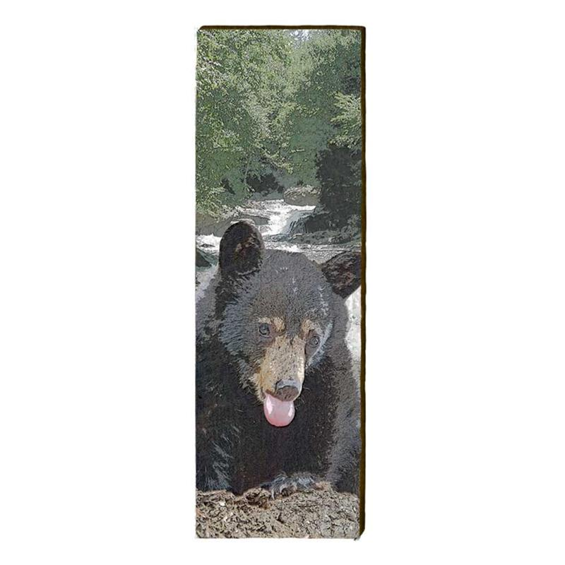 Bear on Rocks Wall Art