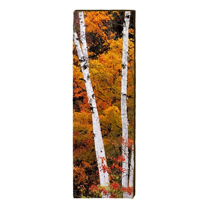 Fall Birch Trees Wall Art