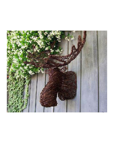 Grapevine Moose Head