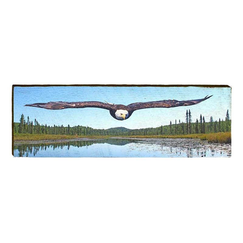 Soaring Eagle Wall Art