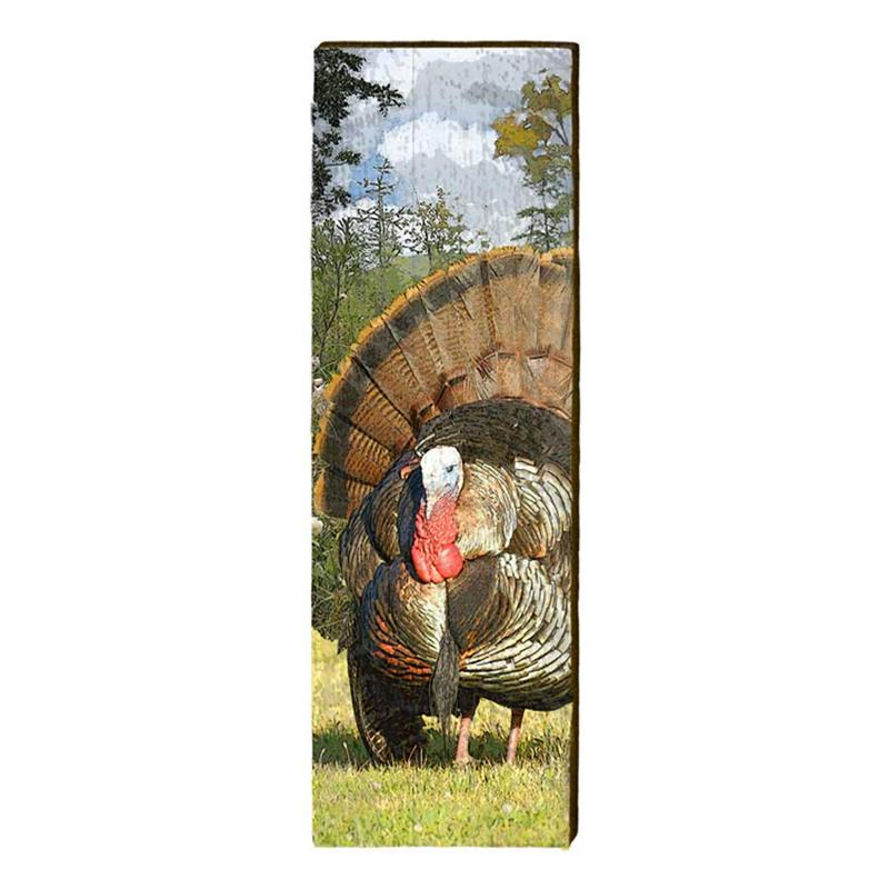 Wild Turkey Wall Art