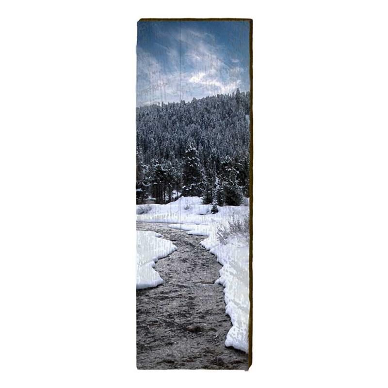 Winter Stream Wall Art